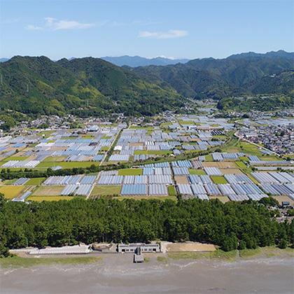 DXで農業を変革する。高知県が産学官連携で取り組む「IoPクラウド」とは